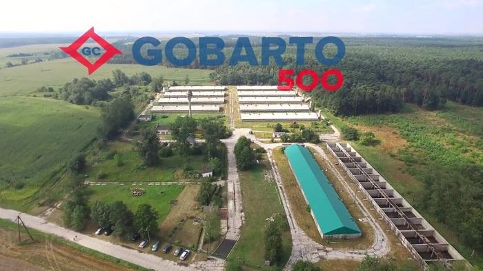 GOBARTO 500 – odbuduj z nami hodowlę trzody w Polsce